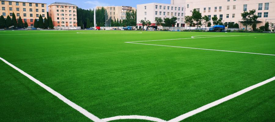 Bao tou Teachers' College, AVG, cỏ nhân tạo AVG