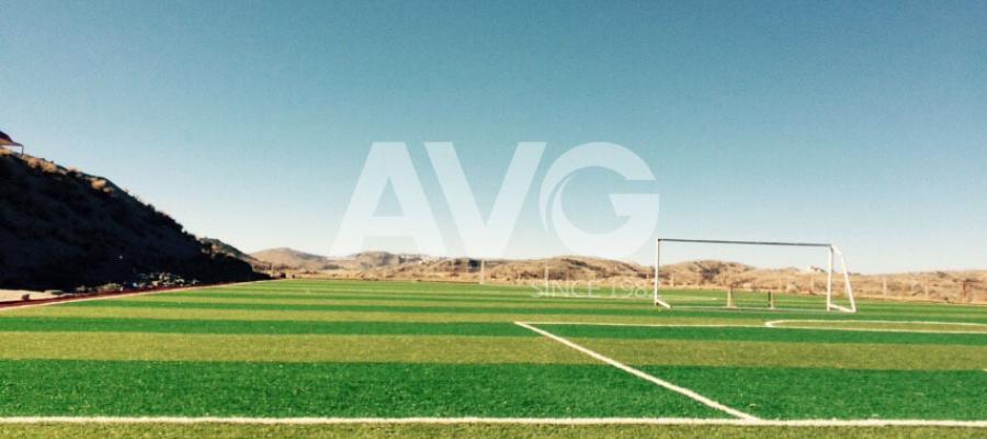 Dự án sân bóng tại Mỹ