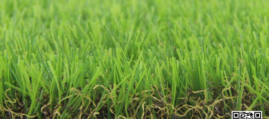 Dòng cỏ Eden Classic 93