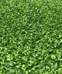 Dòng cỏ sân golf