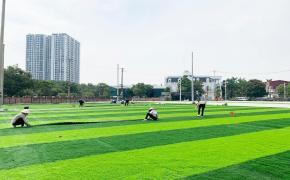 Nguyên nhân gây ra hiện tượng thảm cỏ bị nhăn và cách khắc phục