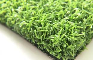 Dòng cỏ Curly PPE 55B