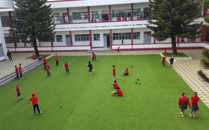 Dự án cỏ sân vườn AVG, cỏ nhân tạo AVG