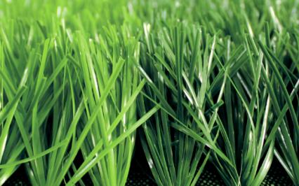 cỏ nhân tạo AVG