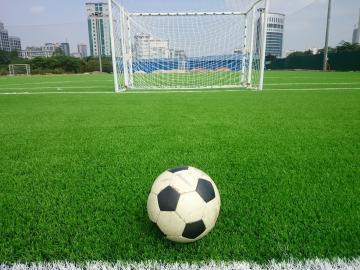 Dự án sân bóng đá cỏ nhân tạo tiêu biểu của AVG tại Việt Nam | Cỏ ...