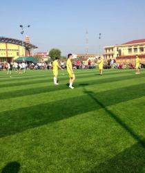 Dự án sân bóng đá cỏ nhân tạo tiêu biểu của AVG tại Việt Nam